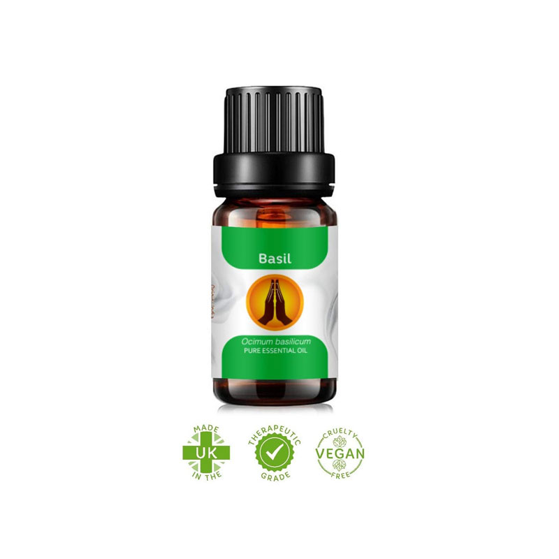 basil essential oil bangladesh